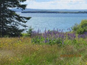 361 Maces Bay Rd, Maces Bay ~ 35+Acres & 165' Water Frontage!