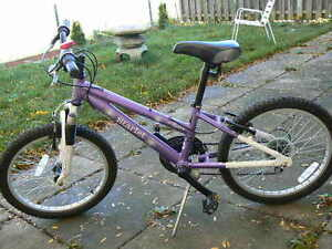 Fabulous Kids Bike- Ages 6- 10 - Lovely Silver Purple Color