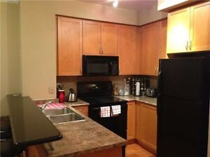 Well Maintained 1+1 Condo Home In City Centre X4903443 AU21