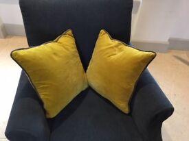 Pair of velvet cushions