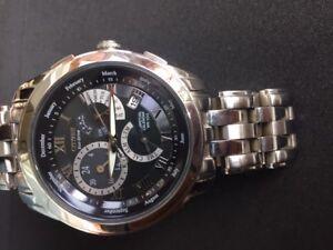 Men's Citizen Eco-Drive® Calibre 8700 Perpetual Calendar Watch