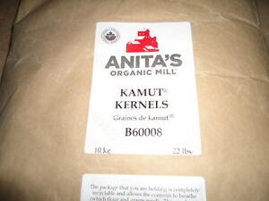 Health, Certified Organic Rye, Wheat, Kamut Kernels