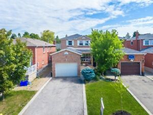 Vaughan Detached home . Finished basement with separate entrance