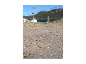 Land for sale in Long Harbour