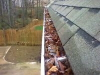 ***** EAVESTROUGH (GUTTER) CLEANING ***** 780 707 7767