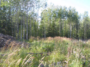 Many Parcels of Amazing Land For Sale - Financing Available