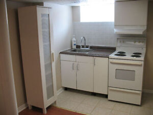 Clean and Bright 1 BR Basement apartment (Bayview/Elgin Mills)