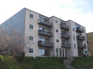 2 Bedroom suite, for the price of 1 bed, Reduced, Renoed, Mar 1