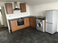 Large and bright 1 bedroom flat near City Center
