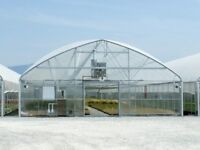 Commercial glasshouse / horticultural nursery wanted.