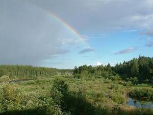 BORD RIVIÈRE - JONQUIÈRE - 5 c.a.c. Saguenay Saguenay-Lac-Saint-Jean image 6