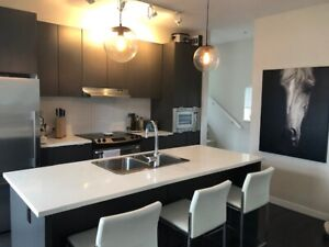 AVAIL NOV 15 or DEC 1-EXECUTIVE FURNISHED TOWNHOUSE PET FRIENDLY