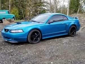 Very Custom 2003 Ford Mustang GT