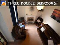 3 bedroom house in Arabella Street, Roath, Cardiff