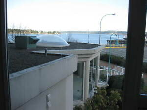 Gorgeous and quiet on the ocean 2 bedroom condo for rent