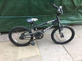 Boys Astra Freestyle Bicycle