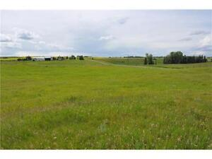 5 Acres close to Calgary, perfect building site.