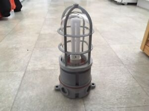 FOR SALE : SCEPTER WATER / EXPLOSION PROOF LIGHT .