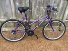 ladies mountain bike with front and rear lights