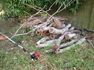 Firewood, hardwood burns clean and slow Mount Gravatt Brisbane South East Preview