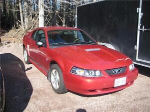 2002 Ford Mustang Reduced $3650!!