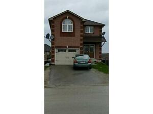 RENOVATED 4+2.5 bath CORNER HOUSE in SOUTH BARRIE