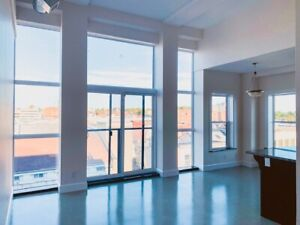 Right in the Heart of Downtown! One Bedroom!