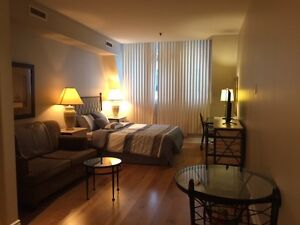Furnished Financial District Studio