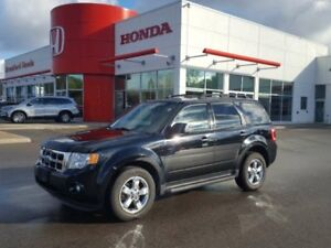 2009 Ford Escape XLT 4dr 4WD 4 Door