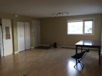 Quiet Downtown 2 Bedroom Apartment Close to Shopping