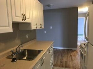 Big and Bright 3br Unit - Pet Friendly