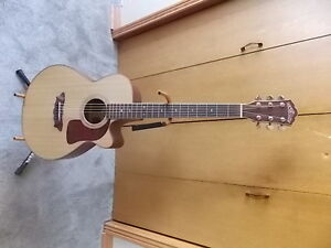 washburn acoustic electric