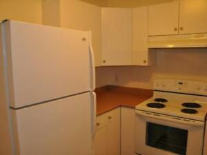 2 Bed 1 Bath Centrally Located ! FURNISHED WITH UTILITIES