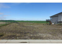 WALK OUT LOT FOR SALE IN CROSSFIELD