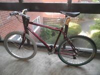 Raleigh M-TRAX Retro 21 speed Mountain Bike