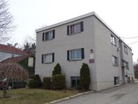 UPDATED 2-BEDROOM UNIT CLOSE TO DOWNTOWN - 84-1 Joseph St