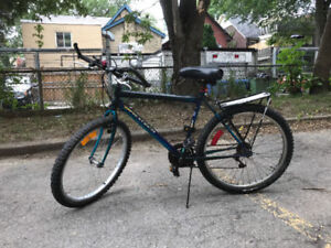 Great Canada made 325 Dynatech fat tires city bike No.2