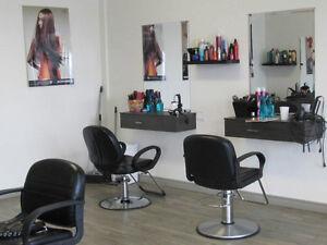 Location d'une chaise de coiffure à Valleyfield West Island Greater Montréal image 4