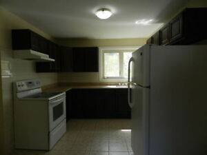 2 Bedroom apt for rent..Great location of Dutch Village Rd..!