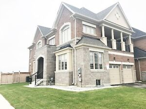 New Double Garage Detached House For Lease W/All New Furnishes