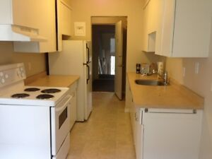 Apartment in Downtown - Base Unit Type Apartment for Rent