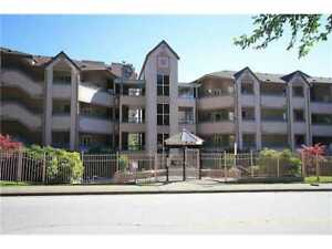 1250 Sqft, 3 Bdrms and 2 Baths in Burnaby/Coquitlam *Avail. NOW!