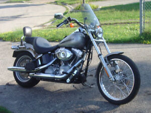 HARLEY DAVIDSON REMOVABLE WINDSHIELD BARS AND RISERS