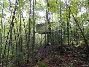 Terre à vendre avec accès au Lac-des-Plages Gatineau Ottawa / Gatineau Area image 8