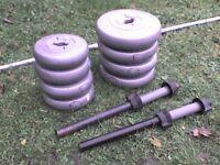 60 lb 27 kg Big Grey Dumbbell & Barbell Weights - Heathrow