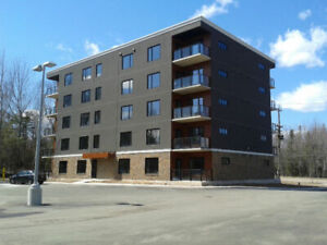 TWO BEDROOM IN NEW BUILDING ACROSS FROM CENTENNIAL PARK
