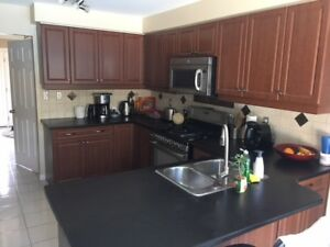 Kitchen Cupboards with CounterTop and Sink