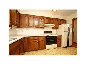 Extra Big Cleaning Room - 5 Mins Waling Conestoga Doon Compus!!! Kitchener / Waterloo Kitchener Area image 3