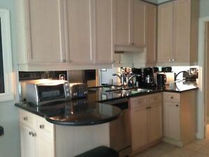 Full Kitchen- cabinets, sink, stainless appliances, countertop