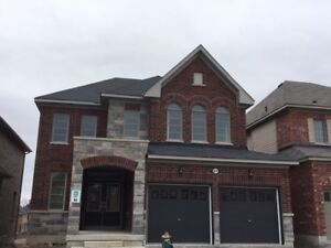 Beautiful Brand New Detached 4 Bedrooms Home
